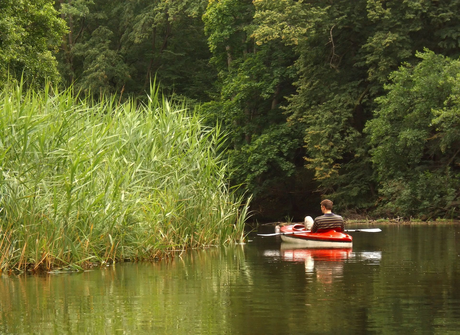 Canoeing on the Recknitz